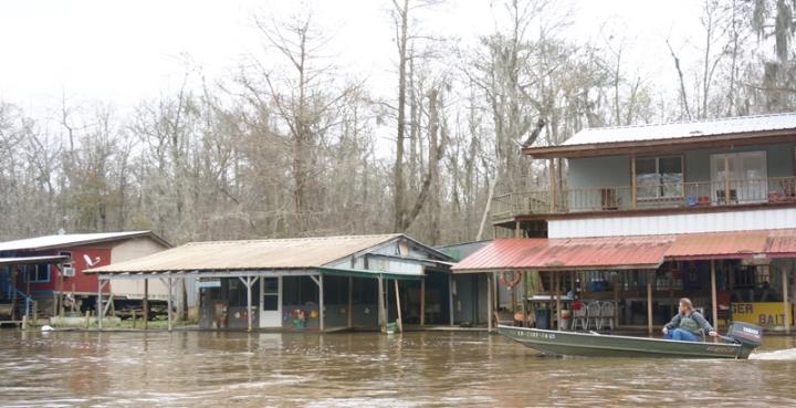 swamp18